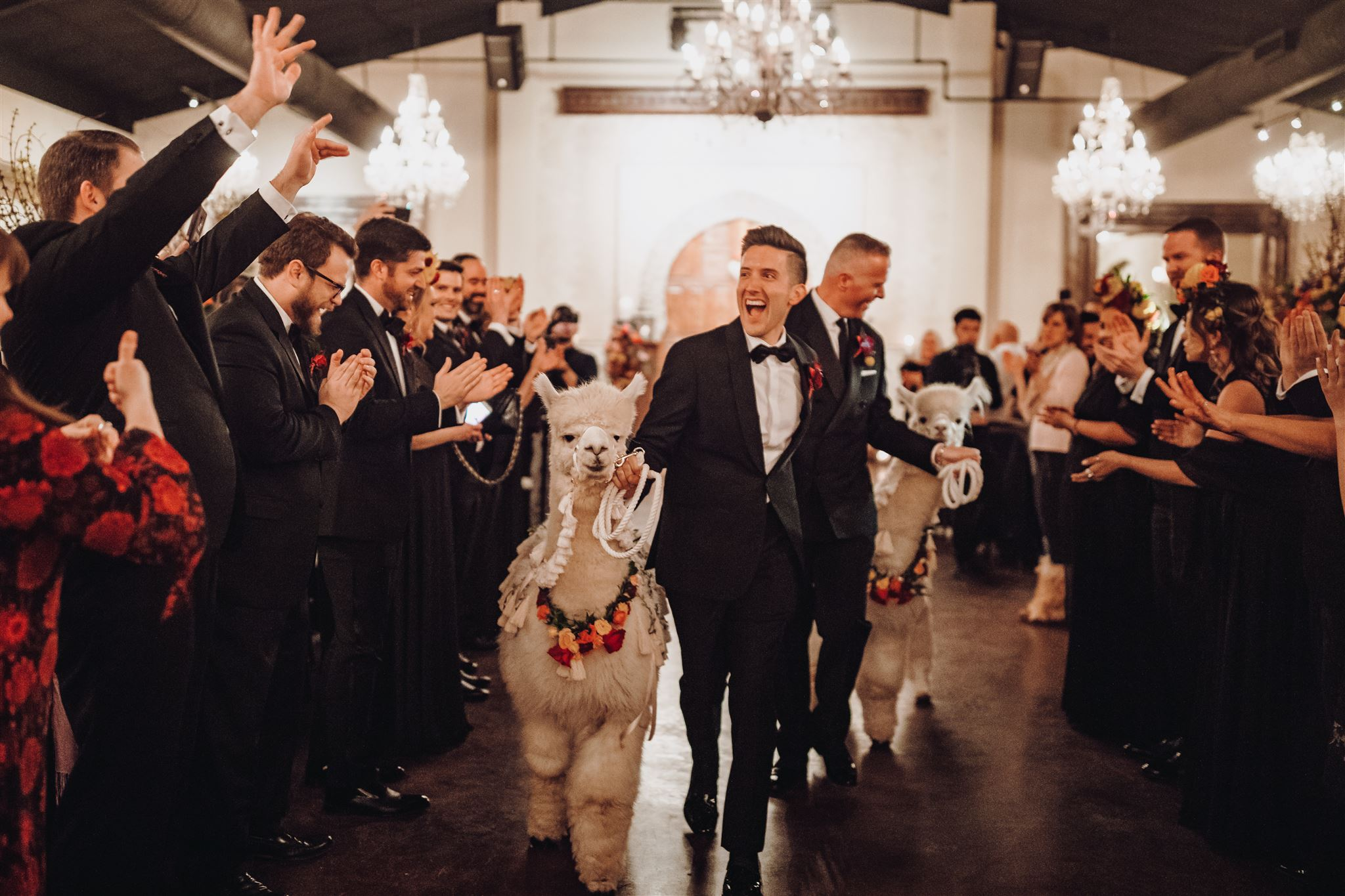 Incorporating animals into your wedding day 2